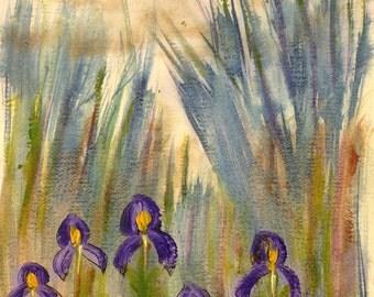 Wild Iris Abstract Art Print