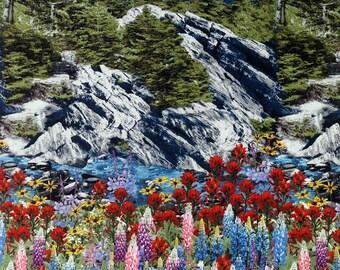 Mountain Trail Landscape - Robert Kaufman - 1 Short Yard
