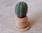 Crochet Cactus Plant in Pot, Southwestern Decor, Succulent Amigurumi, Fiber Art, Faux Cacti
