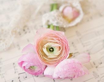 Ranunculus , Lace, & Music ~ 8x10 print