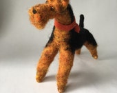 Larger Needle Fleted Welsh Terrier or Airedale