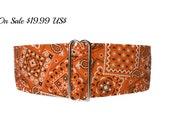 Orange Martingale Collar, 2 Inch Martingale Collar, Bandana Martingale Dog Collar, Orange Bandana, Orange Dog Collar, Preppy