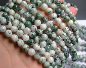 Tree agate - 8mm round beads -1 full strand - 48 beads -  A Quality - RFG794
