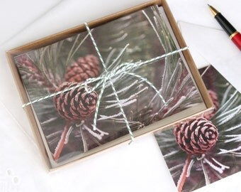 Frosted Pine Note Card Set, 5 blank cards + envelopes, gift boxed