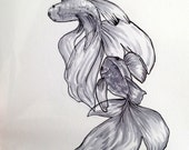 Original Ink Drawing - Two Fishes - 5x7 inches hand drawn ink illustration OOAK
