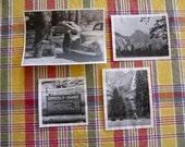 4 Yosemite National Park Original Photo Vintage Photographs Bears Waterfalls 1940's tent  Lot 6