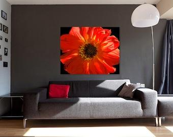 Canvas Art, Macro Flower, Orange, Red, Black, Yellow, fPOE, 12x16, 14x14, 16x20, 18x24, 20x30, 24x32, 30x30, 30x40, 40x60