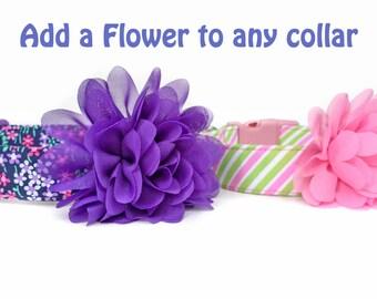 Dog Collar Flower / Chiffon Flower Accessory for Dog Collar / Flower for Dog Collar / Flower Dog Collar Accessory