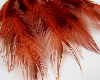 Ringneck pheasant Spey feathers orange RPRSD-03 craft feathers,fasinators,