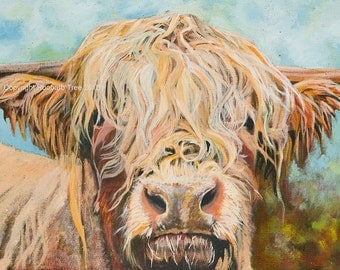 Highland Cow Giclee Print  - Highland Cow Print - Cow Picture - Cow Canvas Price from: