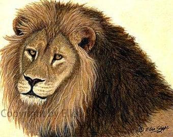 CARD, note card, lion, lion decor, big cat decor, wildlife decor,widlife, Ellen Strope, castteam, exotic wildlife