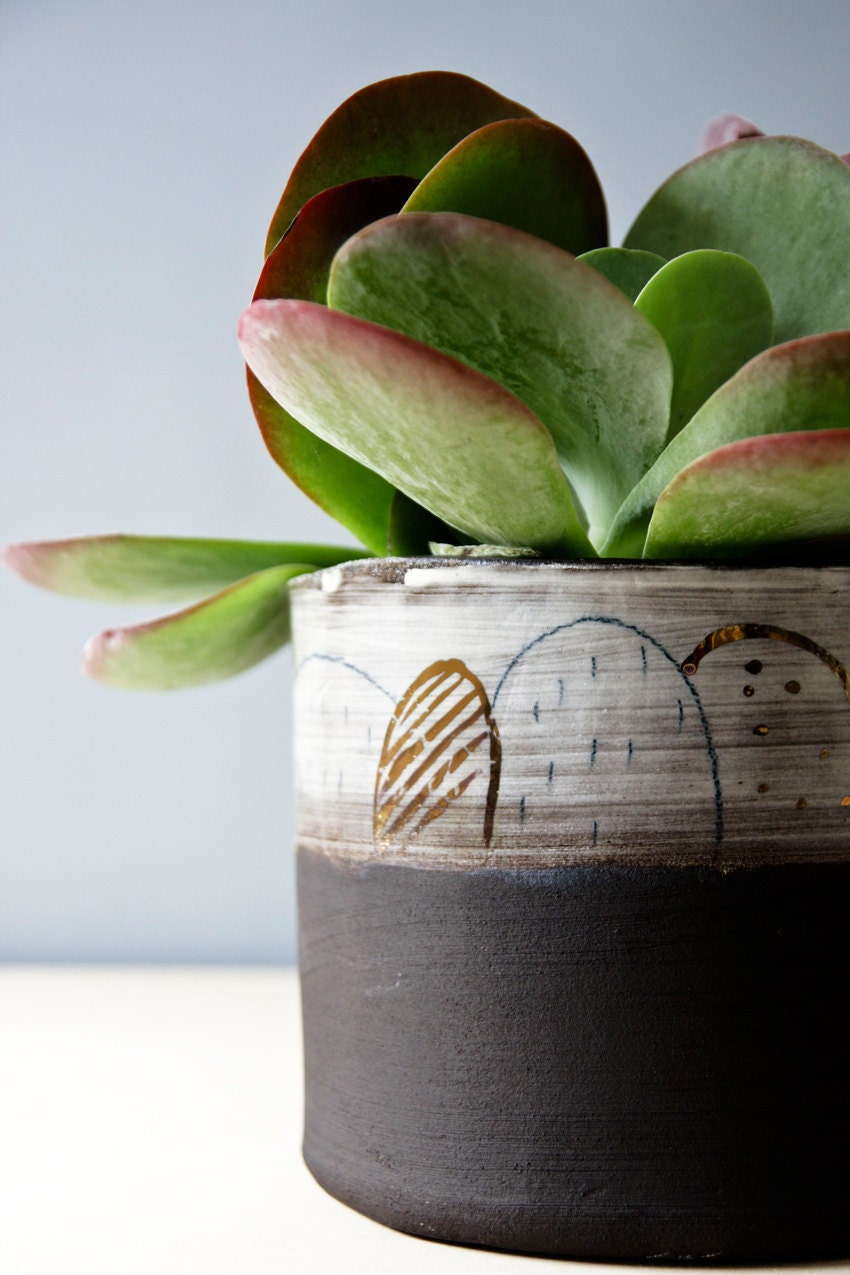 Large Plant Pot Indoor Plant Pot Cacti Planter Succulent