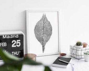 Modern Leaf Print- A3