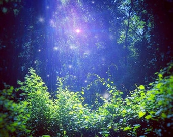 """Photo Print """"Morning Light"""", fantasy photography, fairy photo, pagan art, fae, wicca, magic, enchanted woods, fairytale, forest, nature"""