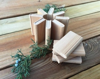 Unfinished Wood Mini Book 12 Pack