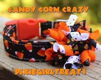 Halloween Dog Collar, Candy corn Dog Collar, Dog Collar, Orange Dog Collar, Black Dog Collar, Dog Collar Bow, Halloween Martingale  Collar