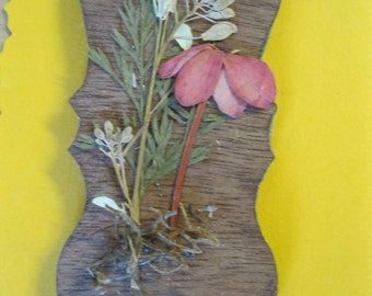 Doll House Miniature Wood Pressed Flower Wall Hanging #24