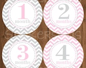 Reserved for Kylie SALE Monthly Baby Milestone Stickers Baby Girl Blush Pink Grey Gray Chevron Dots Bodysuit Baby Stickers
