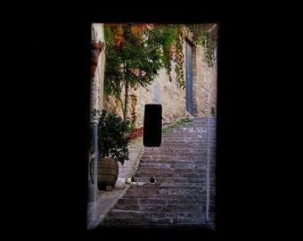 Single Switchplate Cover - Steps and Red Ivy in Assisi Italy