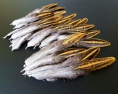 Wild Hen Feathers Craft Supplies Small Feathers for Crafts Jewelry Supplies Brown Tan Feathers Qty12
