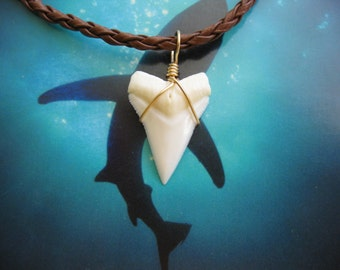 Shark Tooth Necklace, Modern Day White Shark tooth, Braided leather, Brass wire wrapped