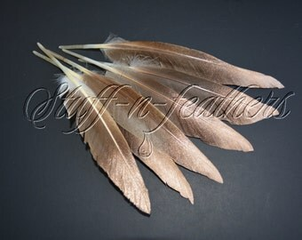 Natural brown duck feathers with sparkling COPPER / ROSE GOLD tip, painted feathers ombre effect / 6-8 in (15-20 cm) long, 6 pcs /F188CD