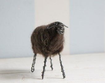 Wired sheep with dark wool