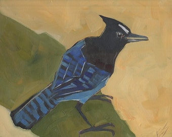 Steller's Jay Original Oil Painting