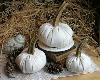 White Suede PUMPKINS with Real Pumpkin Stems Fall Decor Thanksgiving Table Centerpiece Hostess Gift for Mom Farmhouse Decor White Pumpkins