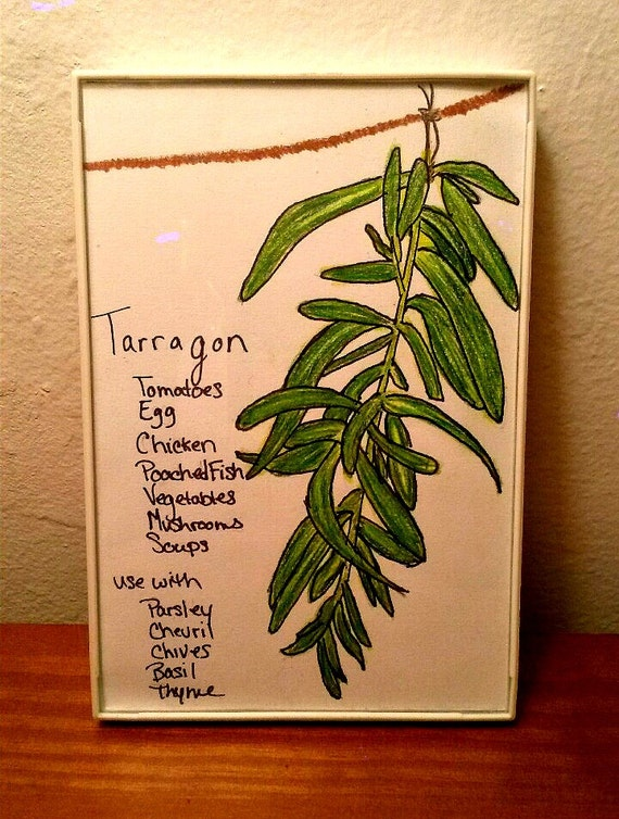 Hearttolifedesigns Framed Drawing Hanging Herbs Culinary