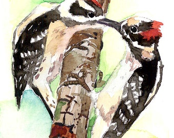 ACEO Original watercolor painting- Sharing, Woodpecker, Bird art, Gift for bird lovers, Collectables