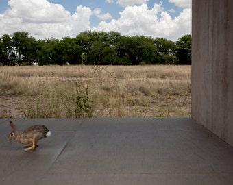 Large Wall Art-BunnyJump Marfa Texas Chinati-Nature Photography-Home Decor-20x30