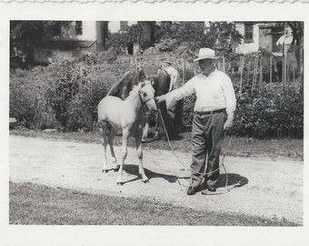 A Little Princess - Vintage 1940s Man and Foal Photograph