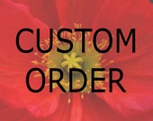 Custom order for Amanda: All Occasion, Blank Greeting Card, Photo Card