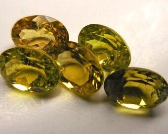 PETROLEUM TOURMALINE (Yellow Tourmaline) (4.75tcw / 5 pcs / mixed yellows)