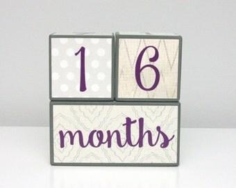 Baby Milestone Blocks - Baby Girl - Gray Cream Purple Charcoal Ivory