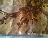 Vera Autumn Golds Ladybug Scarf