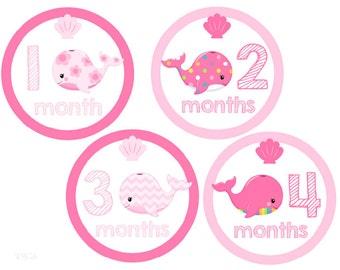 Baby Milestone Stickers Girls, Monthly Baby Stickers, Monthly Stickers, Whales, Baby Month Stickers, Monthly Stickers Girls