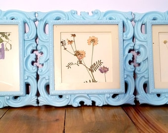Trio of Wildflowers in Intricate Blue Frames: Pressed Flower Art