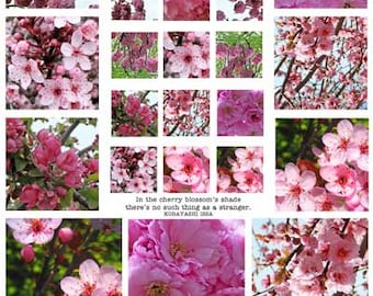 CHERRY BLOSSOMS - Beautiful Pink Blooming Trees - INSTANT Printable Digital Collage Sheet