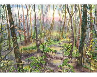 Forest Trees in Autumn Winter Watercolour Landscape Limited Edition Giclee Print