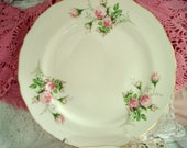 Vintage Dinner Plates Pink Rose Canonsburg China Shabby Cottage Chic Floral Set of 5 Vintage Wedding Replacement China