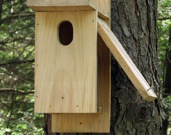 BASIC RUSTIC BIRD House