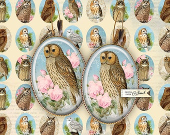 Portrait of Owl - oval image - 18 x 25 mm - digital collage sheet - Printable Download