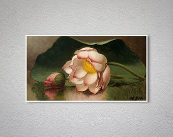 Pink Lotus by Martin Johnson Heade - Poster Paper, Sticker or Canvas Print