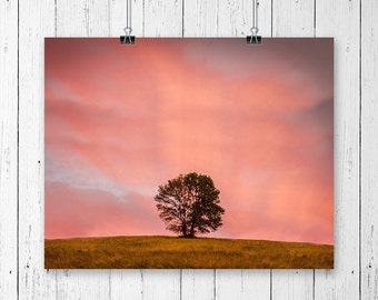 Sunset Photography Nature Gifts Pink Sky Landscape Print Night Photography Country Home Decor Farmhouse Decor Cottage Chic Nursery Wall Art