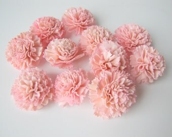 Blush Pink Carnation Sola Flowers - SET OF 10 , Sola Flowers, Blush Wood Sola Flowers,  Carnation Sola, Balsa Wood Flower, Craft Flowers