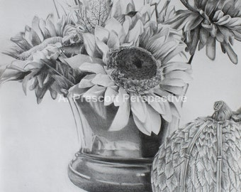Fall Still Life -graphite drawing