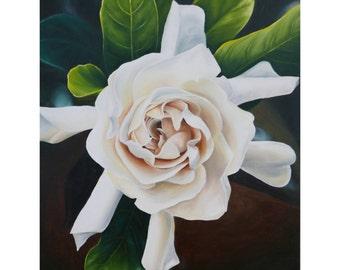"""Gardenia- Original Oil painting (16""""x20"""")"""