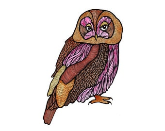 Tawny Owl // A4 Archival Giclee Print // by Amy Rose